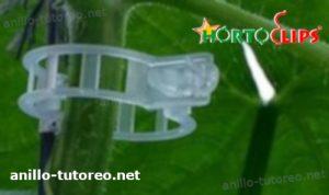 clip de tutoreo en tallo de planta